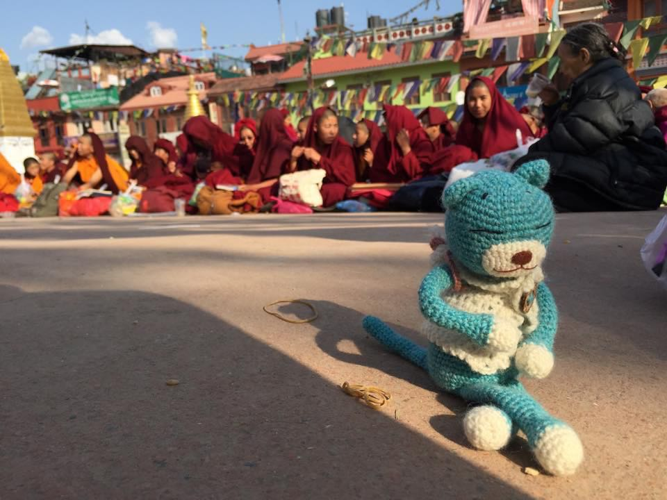 send your stuffed animal on a trip 5 cd
