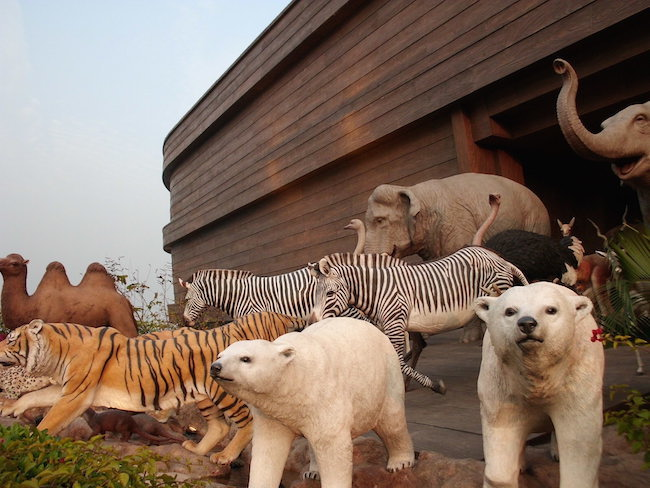noah ark animals in hong kong pic