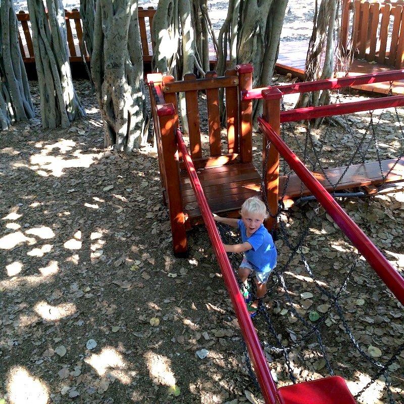 new farm playground chain bridge pic