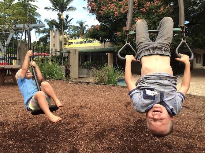 swings at macadamia castle byron bay pic