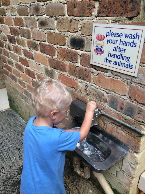 washing hands station at macadamia castle byron bay