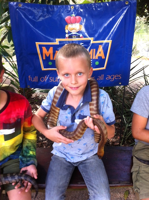 macadamia castle ned with snake pic