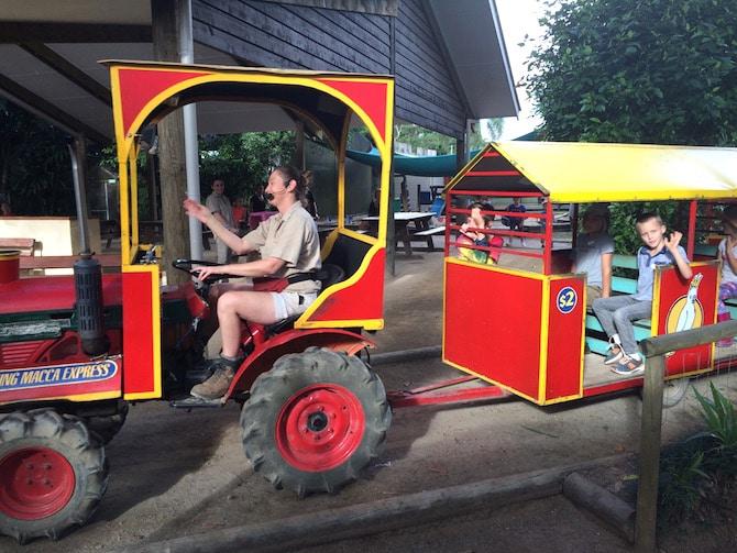 macadamia castle train ride pic