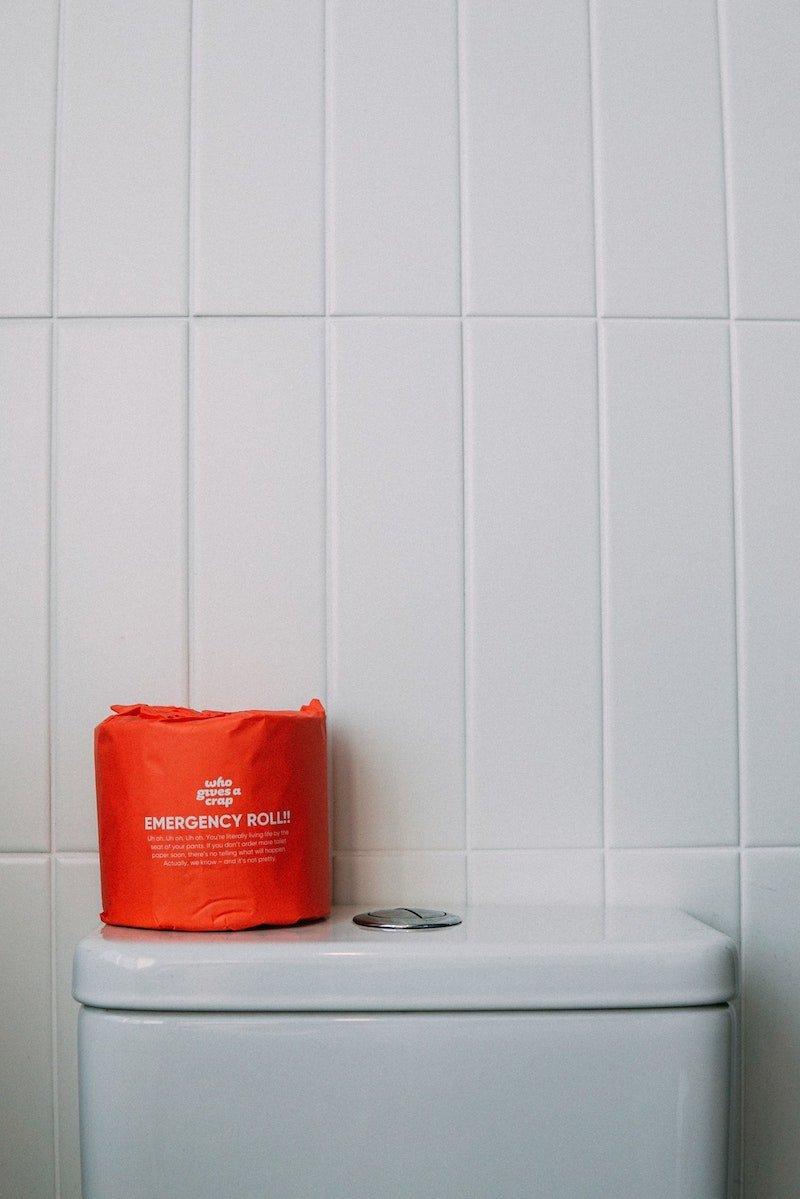 toilet paper in public toilet by Elle Hughes pexels