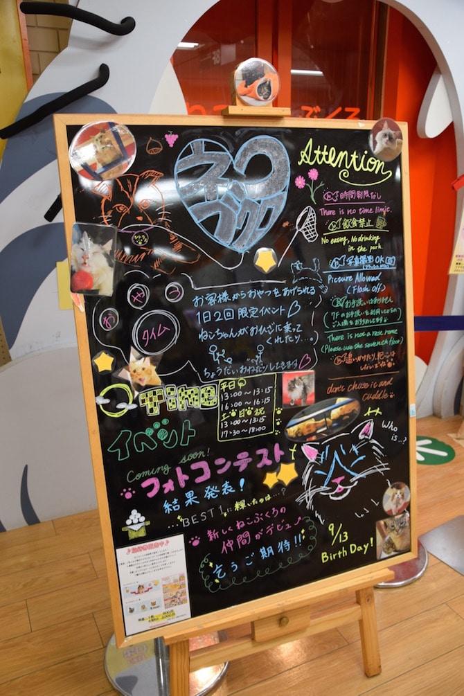 cat cafe ikebukuro signage