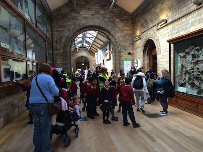 natural history museum london corridors