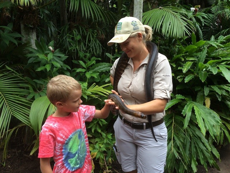 things to do in queensland with kids - australia zoo pic