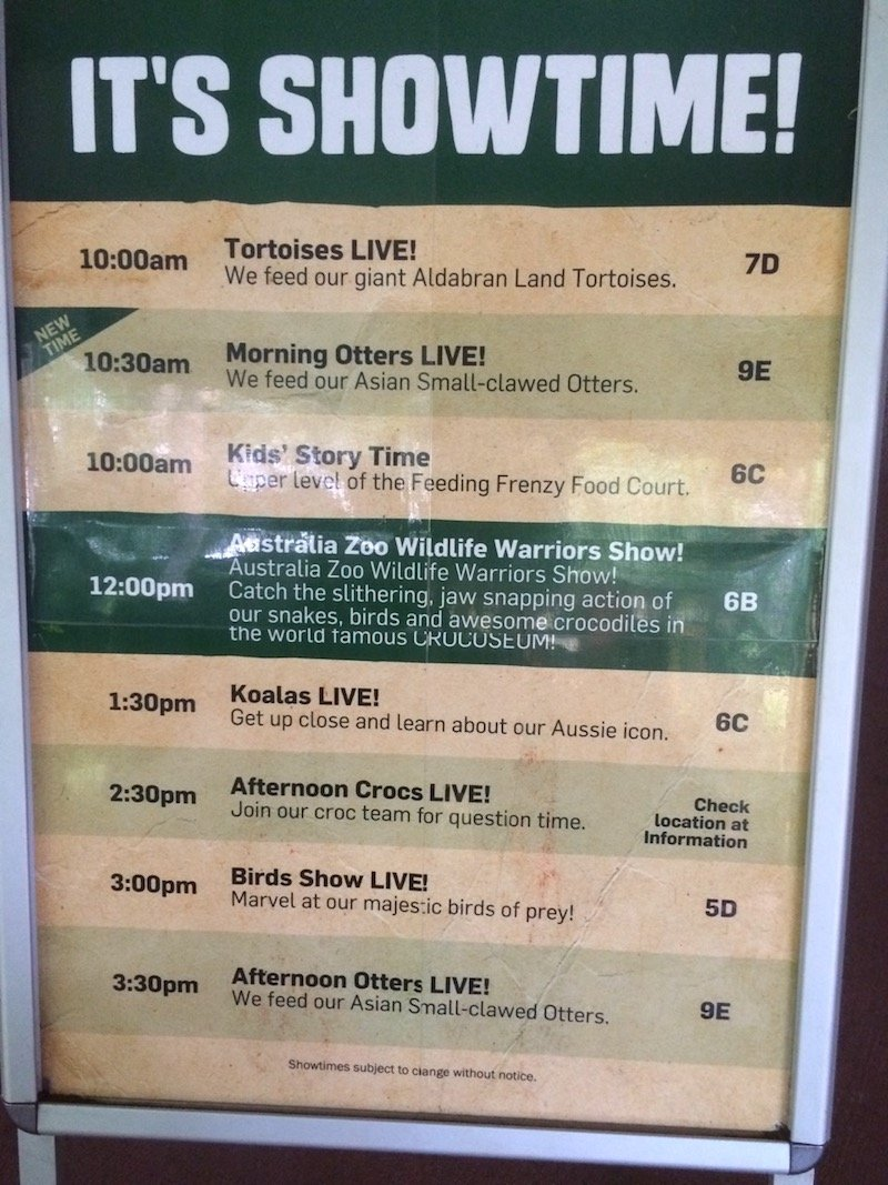 australia zoo show times board