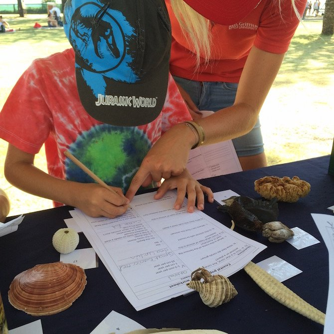 gold coast active and healthy shell activity pic