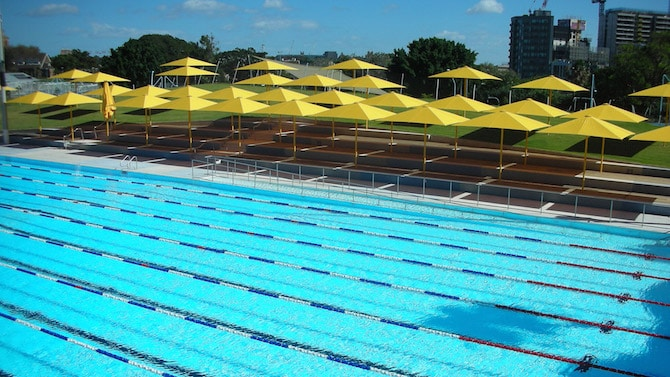 Roam-the-Gnome-Family-Travel-Directory-Prince-Alfred-Park-Pool-park-pool-grass-area
