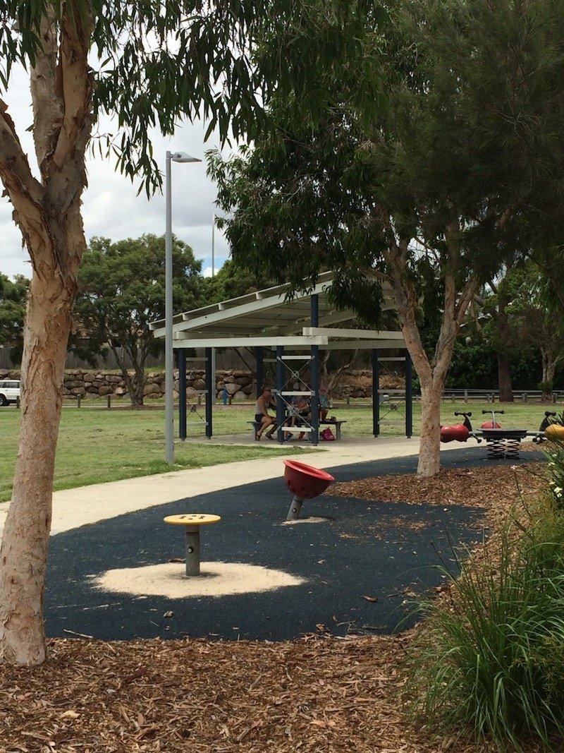 photo - hidden world playground fitzgibbon petal spinners