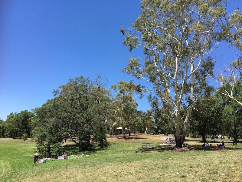 Weston Park Yarralumla Canberra parks picnic area pic