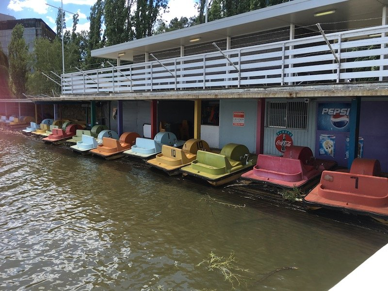 lake burley griffin cruises paddle boats pic