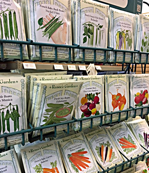 brooklyn botanic garden shop