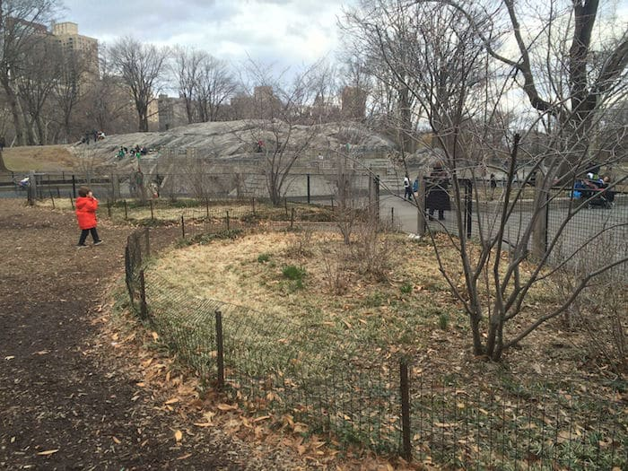 Visit ROAM THE GNOME Family Travel Website Directory for SUPER DOOPER FUN ideas for family vacations around the world. Search by city. Photo- Heckscher Playground Central Park NYC
