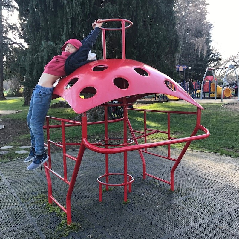 photo - taupo playground red climbing gym