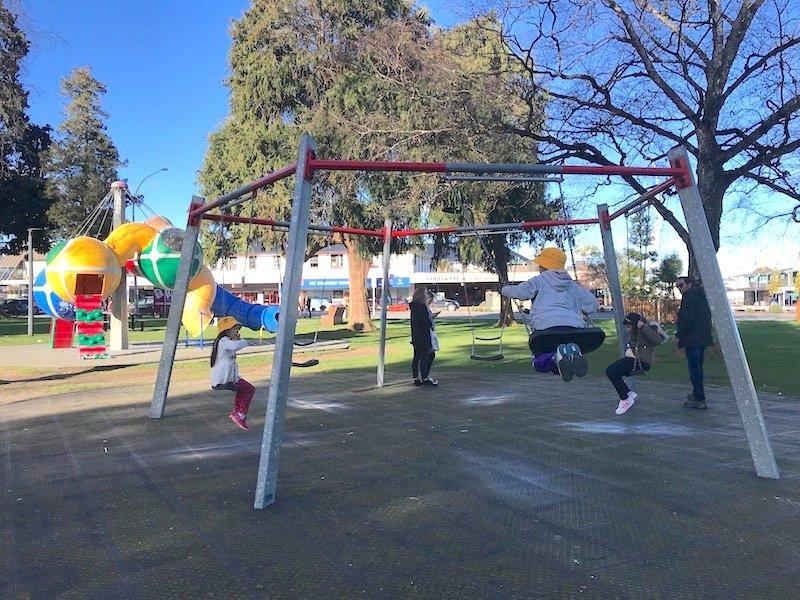 photo - taupo playground swings
