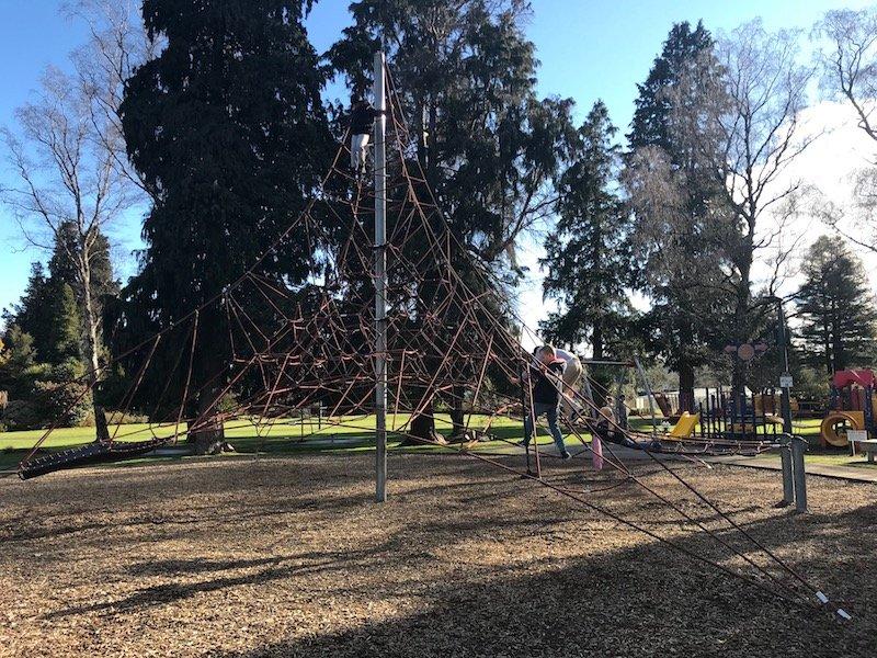 photo - taupo playground view