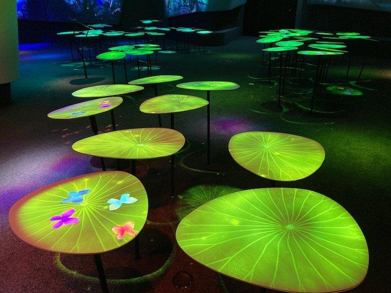 changi experience studio gardens of harmony pic 800