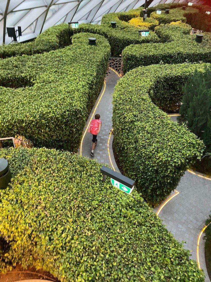 hedge maze at changi jewel pic 800