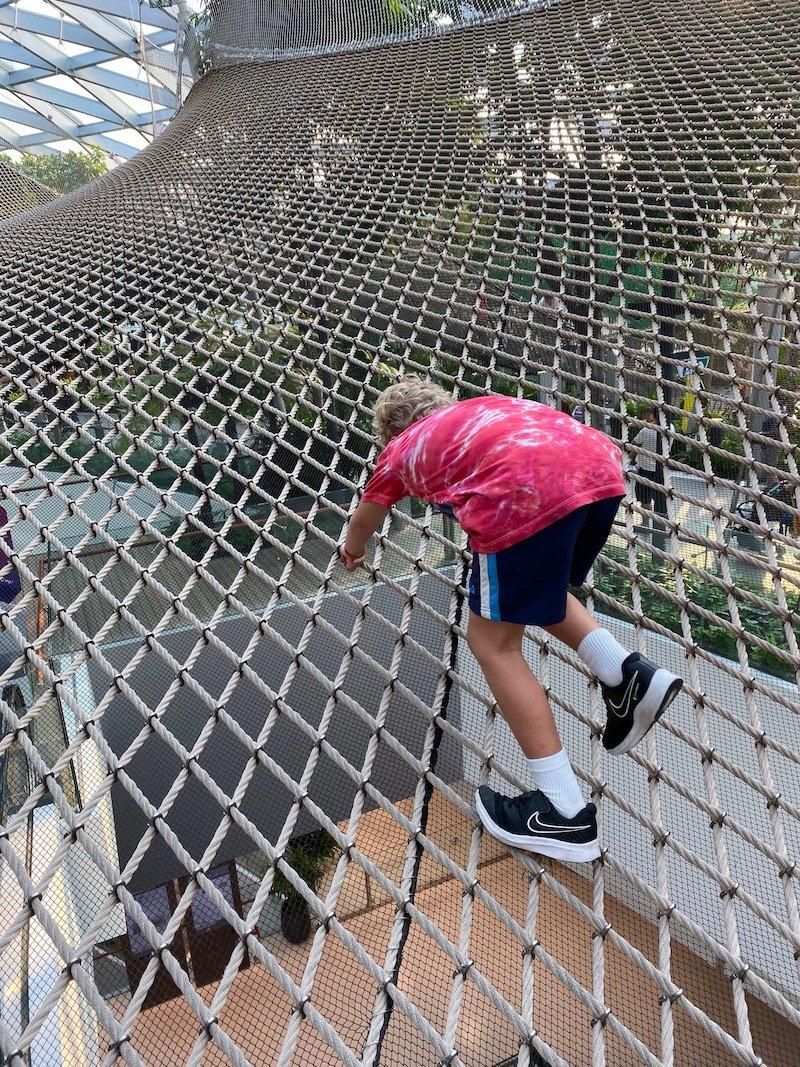 walking sky nets at jewel changi pic 800