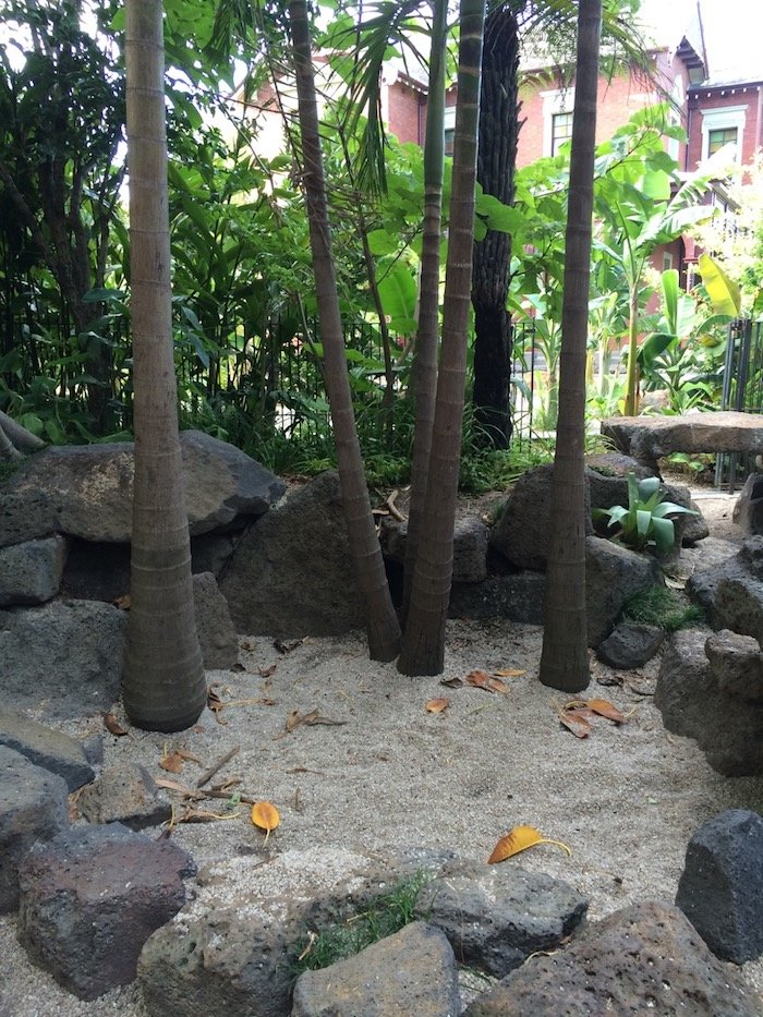 Ian Potter Childrens Garden Melbourne bamboo garden pic