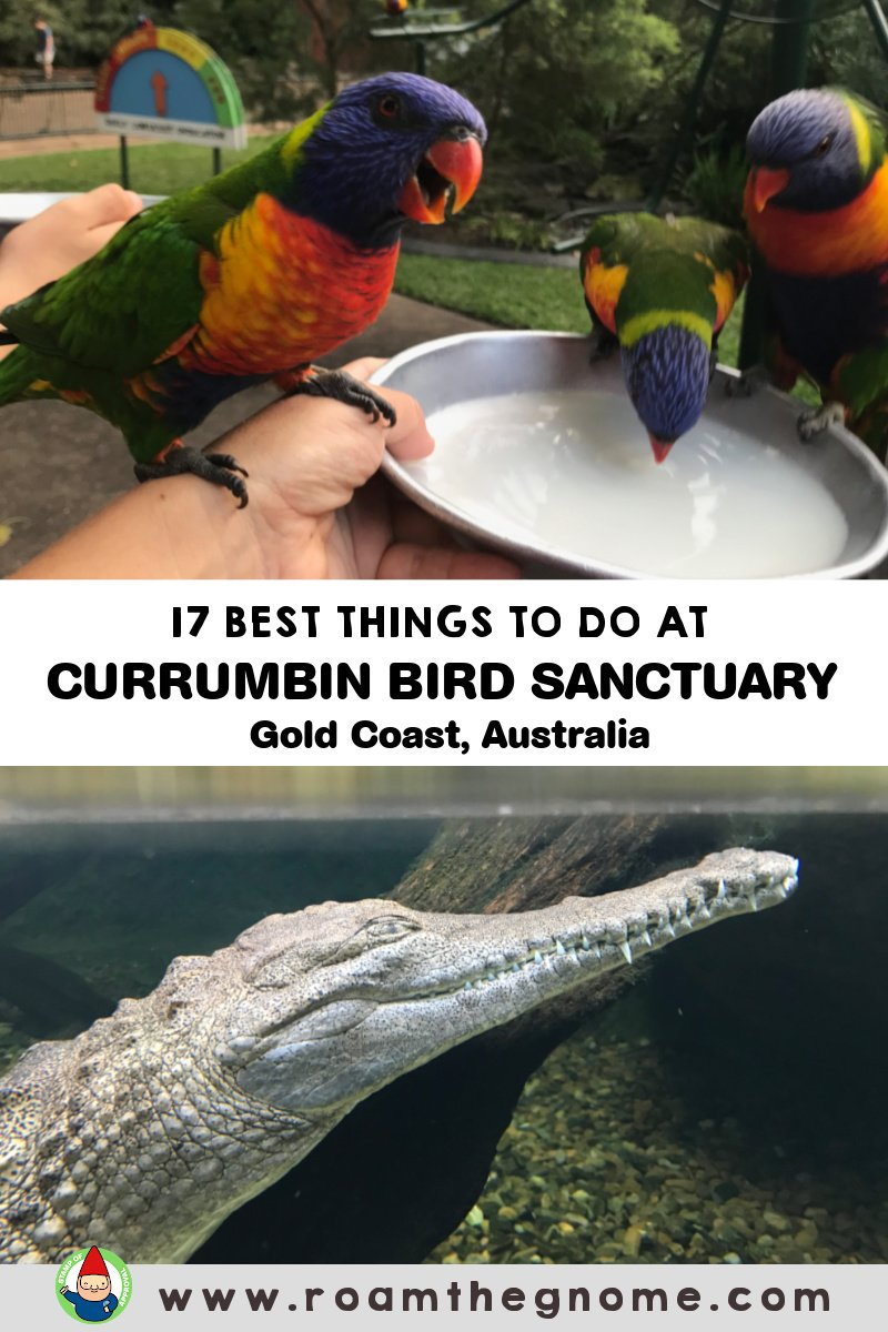 PIN currumbin bird sanctuary