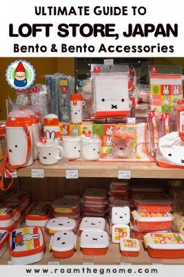 PIN 1 - loft bento accessories 800