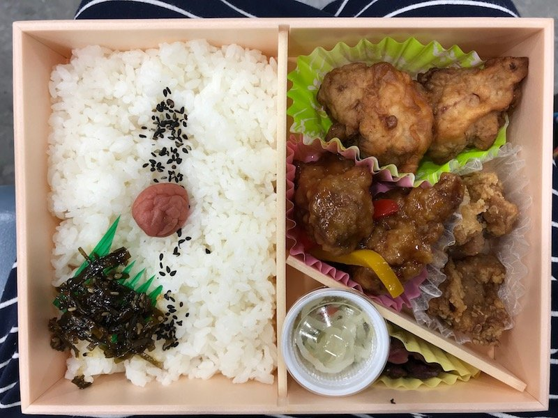 eki bento for train travel in japan pic