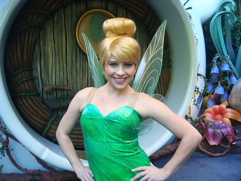 disney guest relations pixie dust - tinkerbell by jennie park