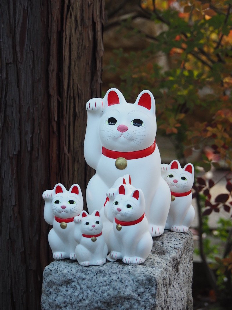 image - cat temple gotokuji tokyo by hotel kaesong