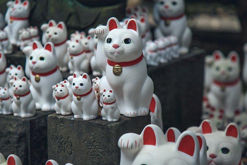 image - gotokuji cat temple by john gillespie