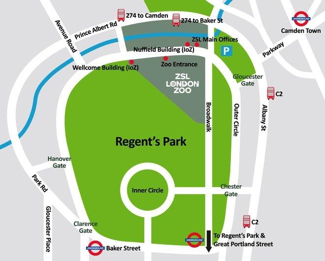 image - london-zoo-animals-map