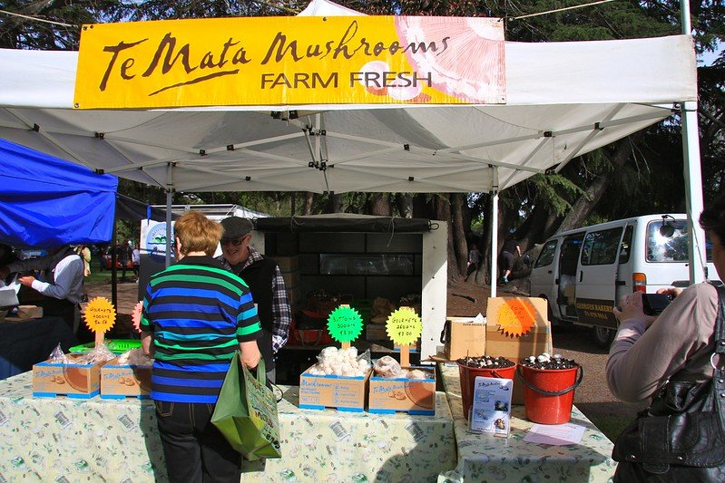 temata mushrooms at hawkes bay farmers market pic by itravelnz