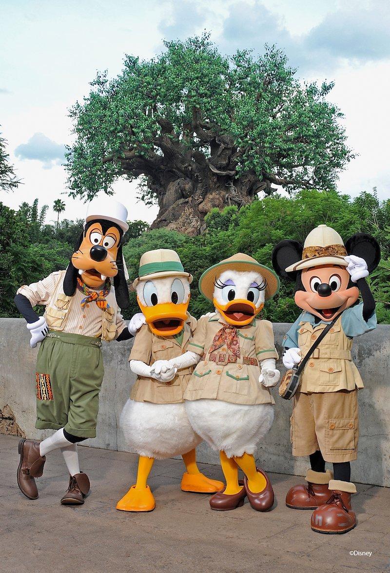 Disney Animal Kingdom with Mickey pic