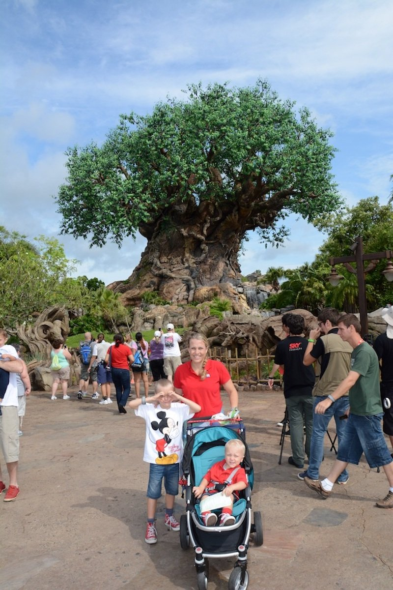 animal kingdom disney world with toddlers and kids 800