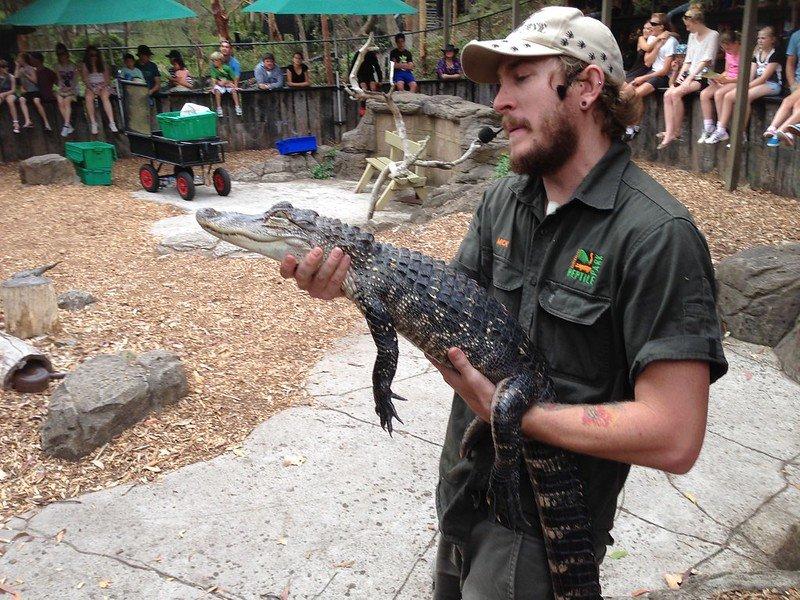 australian reptile park by dushan hanusk