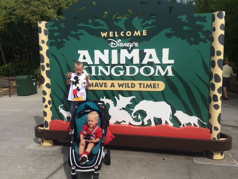 disney tips with toddlers - outisde animal kingdom