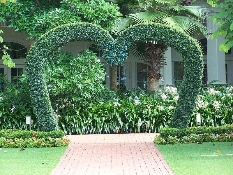 hong kong disneyland hotel landscaping pic by joel