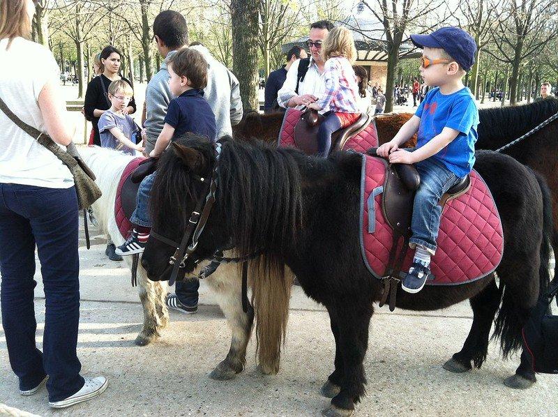 jardin du luxembourg pony rides by steven & courtney johnson