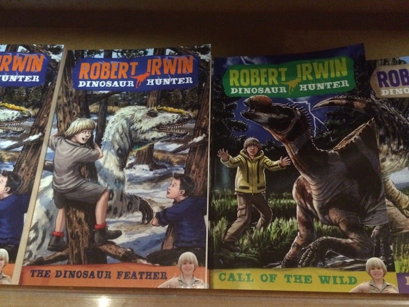 robert irwin books pic