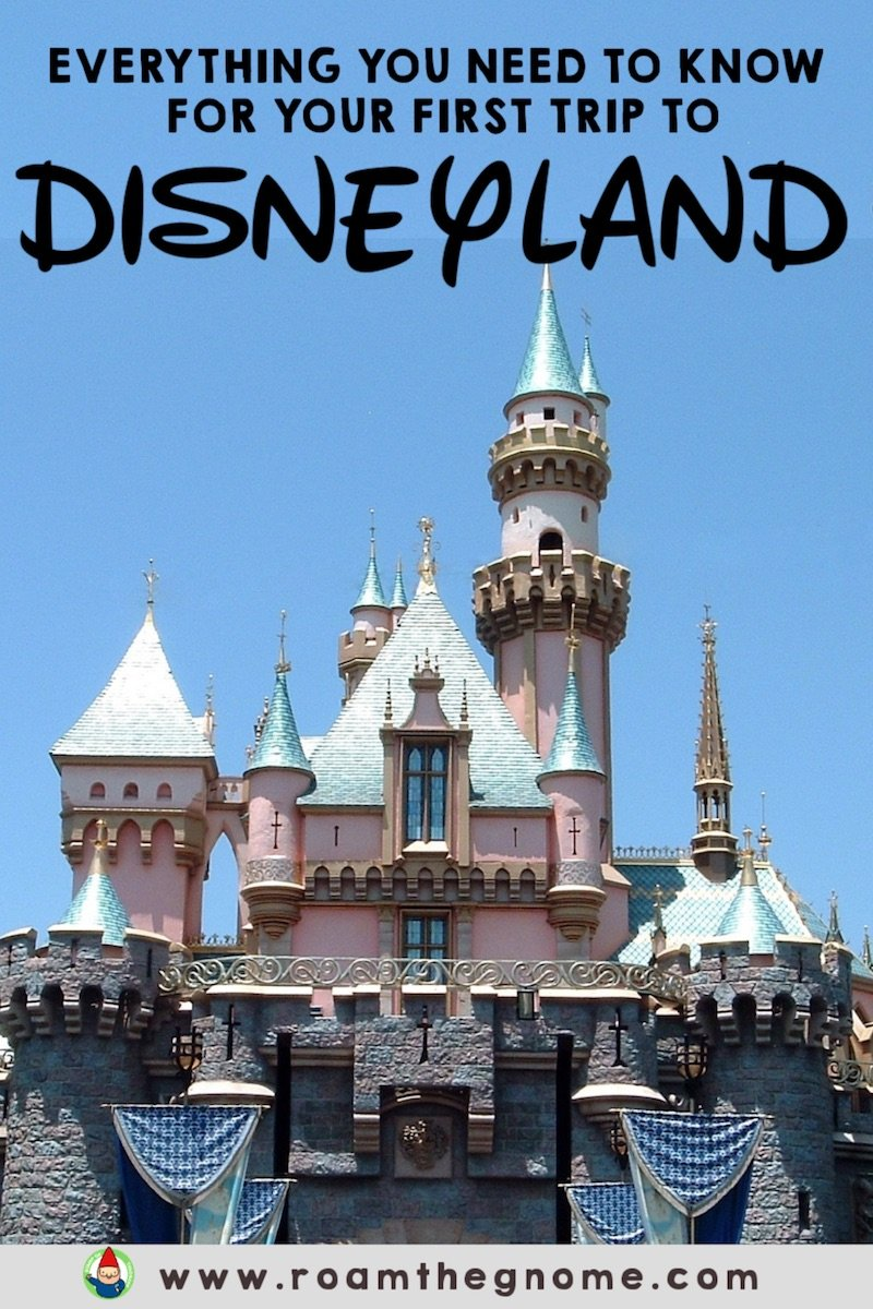 PIN disneyland CC pin