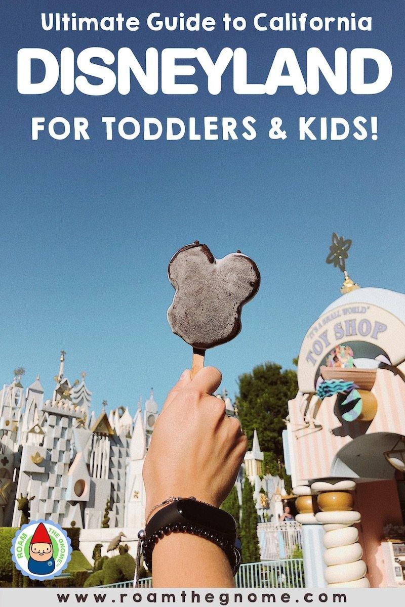 PIN disneyland for toddlers 800