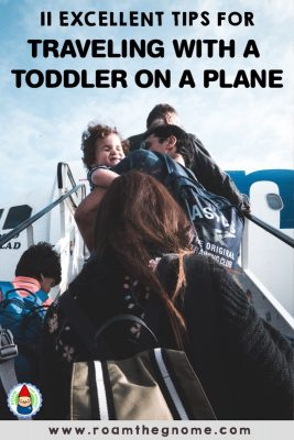 PIN travelling with a toddler on a plane 800