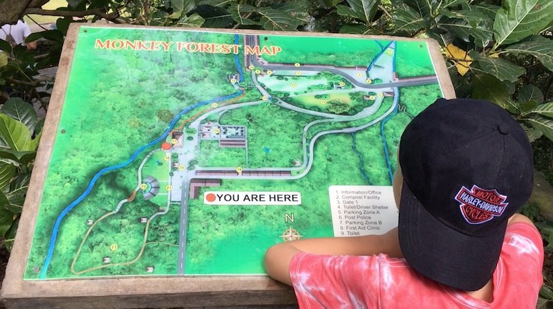 bali-monkey-forest-map-with-ned-pic-800
