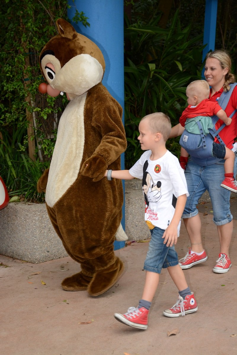 free things to do at disney world - chip and dale campfire 800