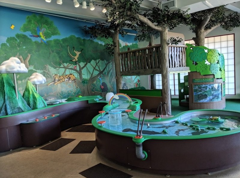 rainforest-adventures-at-hawaii-discovery-center