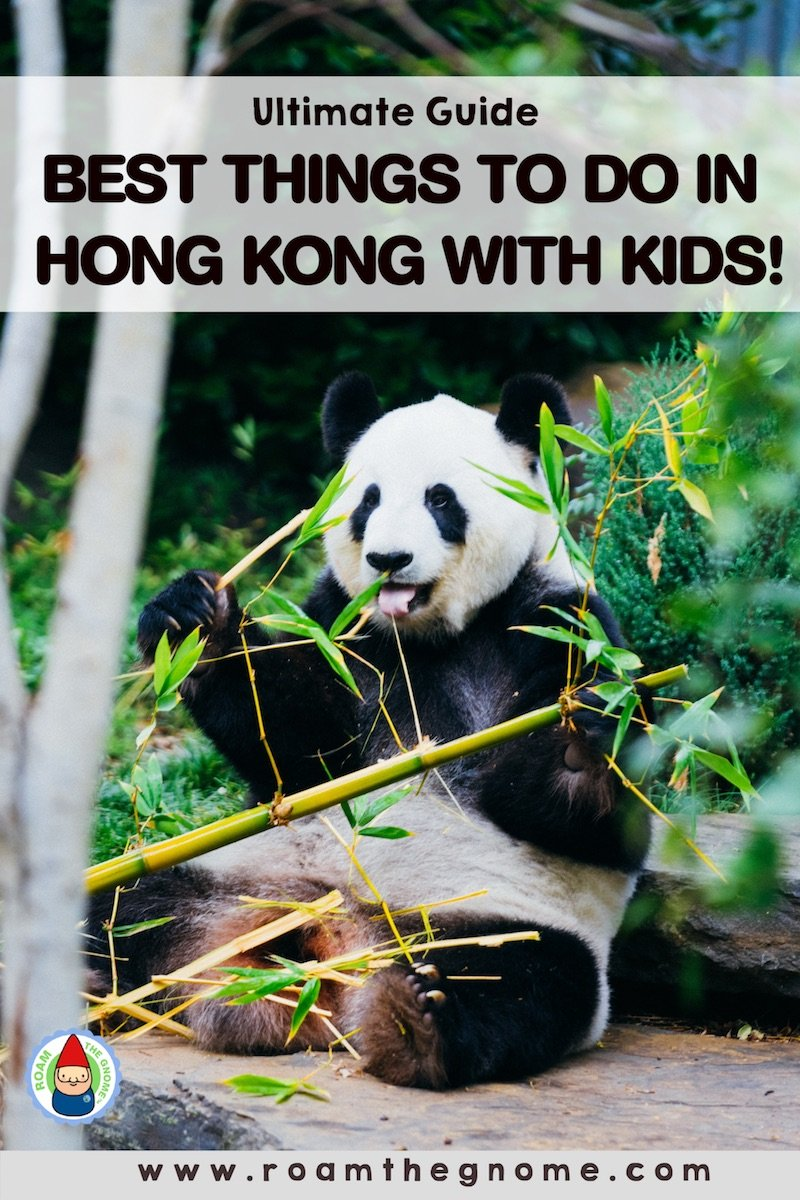 PIN best things to do in hong kong with kids 800