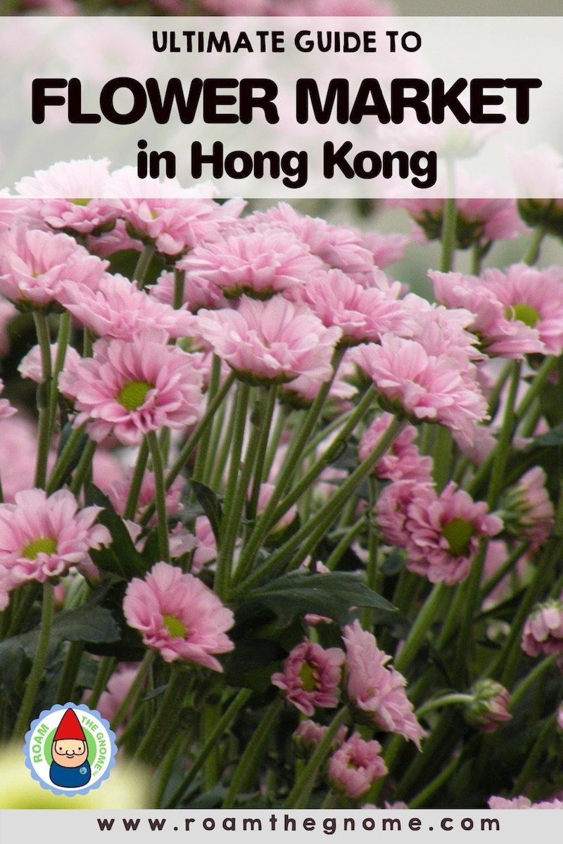 PIN flower market hong kong 800