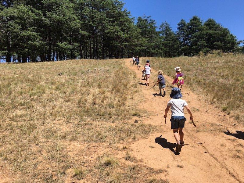 arboretum nature play track 800